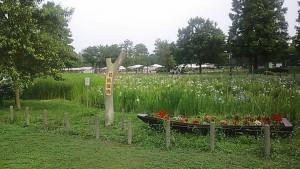 【公園】水元公園の葛飾菖蒲祭り